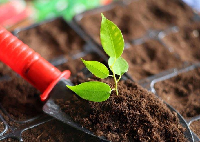 土壤養分檢測儀